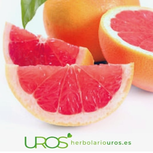 Alimentos con vitamina C frutas y verduras ricas en vitamina C Vitamina C: alimentos que la contienen Descubre las propiedades de la vitamina C y los beneficios que tiene para tu sistema inmune y el sistema articular