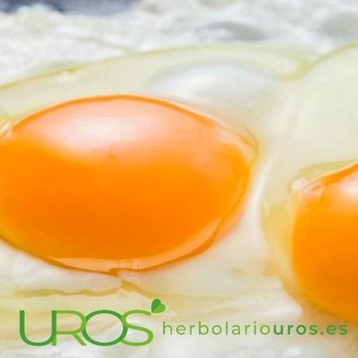 Alimentos con vitamina D Vitamina D en alimentos - ¿Qué alimentos lo contienen en dosis altas? Descubre las propiedades de esta vitamina y como evitar su déficit