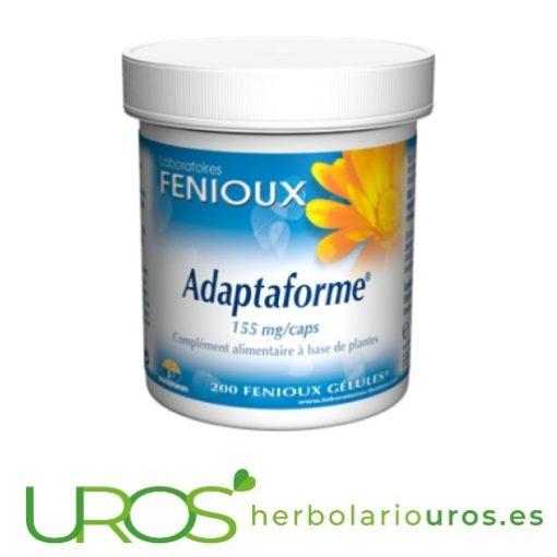 Adaptaforme Feniuox: Rhodiola con Eleuterococo Adaptaforme es un remedio natural adaptógeno - ayuda a tu organismo a adaptarse a diferentes tipos de estrés físico o psíquico También puede ayudar y aumentar las capacidades mentales y físicas