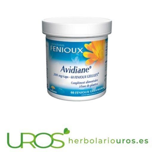 Avidiane de Fenioux - tus defensas te lo agradecerán Avidiane Fenioux - para tu sistema inmune - tus defensas te lo agradecerán Avidiane de laboratorios Fenioux es un suplemento natural pensado para aumentar las defensas naturales de tu organismo