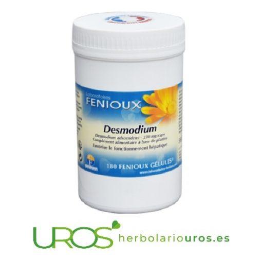 Desmodium adscendens en cápsulas de lab. naturales Fenioux Desmodium en cápsulas - un remedio natural hepático Desmodium adscendens - propiedades y beneficios - una ayuda natural para tu hígado, como remedio desintoxicante y ayuda drenante natural