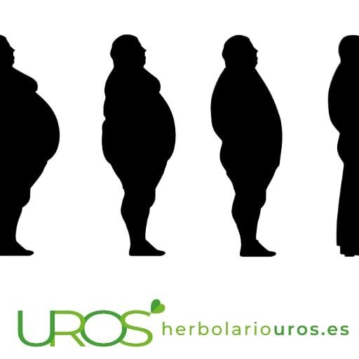 ¿Cómo adelgazar? Consejos para perder peso rápidamente ¿Cómo adelgazar de manera natural y efectiva?