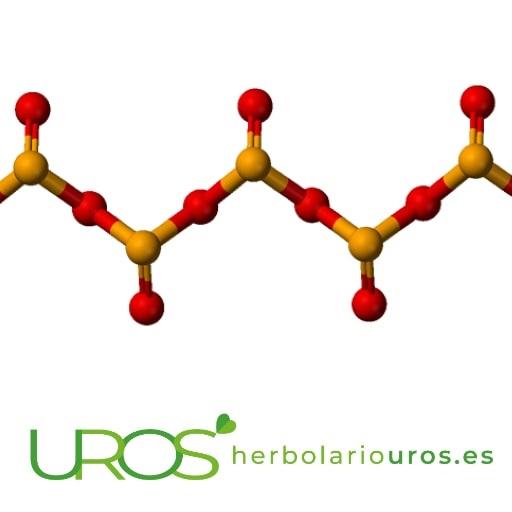 Selenio propiedades - selenio para qué sirve Descubre todas las ventajas naturales de selenio