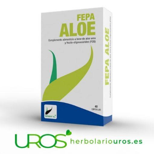 Fepa Aloe puro en cápsulas: remedio natural para tu digestión y ayuda en casos de estreñimiento Para tu mejor regularidad intestinal - aloe vera puro en cápsulas Fepa Aloe Vera en extracto en cápsulas - además enriquecido con frucooligosacáridos