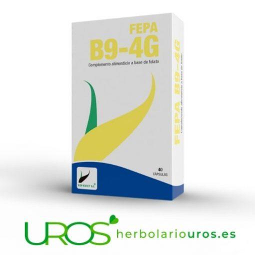 Fepa B9 4G: suplemento a base de ácido fólico - uno de los folatos que ayuda a los tejidos maternos durante el embarazo, síntesis normal de los aminoácidos y células sanguíneas. También ayuda en el metabolismo, sistema inmune y función psicológica. Fepa B9: 40 cápsulas.