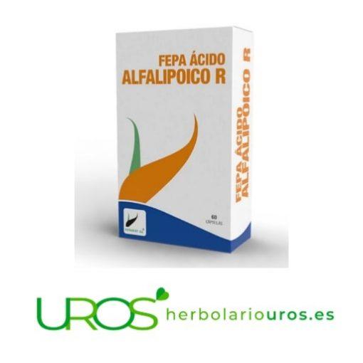 Fepa Ácido Alfa Lipoico R (ALA): Ácido lipoico reducido Fepa-Ácido Alfa-Lipoico: Propiedades y Beneficios ¿El ácido alfa lipoico para qué sirve? Ácido alfa lipoico: para reducir tu estrés oxidativo