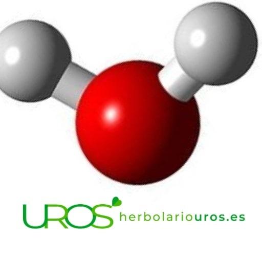 Aminoquelado – un mineral aminoquelado – ¿Qué siginfica?