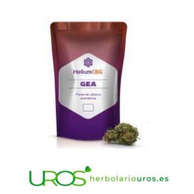 Comprar CBG - Cáñamo con elevadas dosis de CBG Descubre la flor de cáñamo con elevadas dosis de CBG - novedad Descubre también sus propiedades y beneficios para tu salud